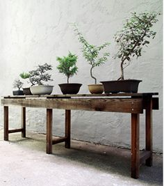 iwantitiwantitiwantit. wood plant display table.