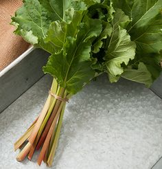 Victoria Organic Rhubarb Crowns are sweeter and milder than other varieties. Grows best zones 4-8. johnnyseeds.com ships them from late March through April.