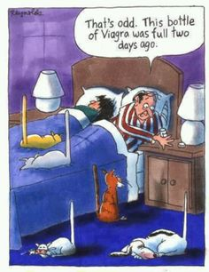 Generic Viagra is used to treat male Impotence ( Erectile Dysfunction). Buy Generic Viagra online(Sildenafil Citrate through our online pharmacy/drugstore with daily coupons. Funny Cartoon Jokes, Cartoon Pics, Funny Cats, Pharmacy Humor, Pharmacy School, Wale, Adult Cartoons, Cat Cartoons, Adult Humor