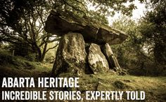 At Abarta Heritage we try to help to tell the story of Ireland with engaging audio guides and content. We also empower communities to protect their heritage Stem Courses, History Websites, Science Resources, Teaching Resources, Summer Courses, History Encyclopedia, Images Of Ireland, Stonehenge, Ancient History