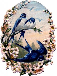Vintage Birds with Flowers Scrap - Pretty! - The Graphics Fairy