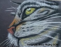 Fauna - Anna Rigley Anna, Cats, Artist, Animals, Ideas, Gatos, Animales, Animaux, Artists