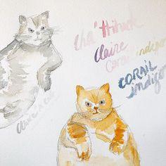 Chat-chuffit !☝🏻🙀 Ne vous fiez pas aux apparences il n'y a que mes chats qui sont en colère.. pas moi !! 😸 . Ce que j'aime dans le dessin et dans l'art en général, c'est que tout peut être créé et recréé à l'infini. Alors oui les chats semblent fâchés et on bien mangés.. mais pourquoi pas ? Qui a dit qu'il fallait qu'un chat soit peint avec un ventre bien lisse, un museau comme-ci, des oreilles comme-ça...?? Si, pendant les vacances, vous faites des activités manuelles (peinture, dessin…