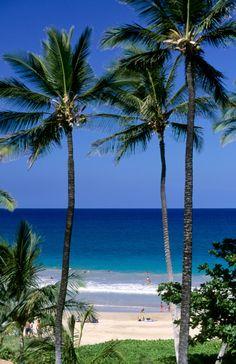Hapuna Beach. Praias