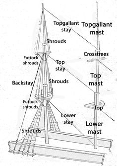 Standing rigging on a square-rigged vessel (illustrated left), which supports a mast comprising three steps: main, top, and topgallant (illustrated right). The shrouds support each section laterally and the stays support each, fore and aft.