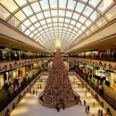 The Galleria, Houston - Still my favorite place to shop in the world.  Everything you need under one enormous roof!
