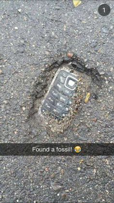 found -Fossil found! found - 30 Try Not To Laugh At These Hilarious Meme Pictures Funny Memes - Funny animals have always been an internet sensation. They've got what it takes to make us laugh, especially when . Funny Shit, Crazy Funny Memes, Really Funny Memes, Funny Laugh, Stupid Funny Memes, Funny Relatable Memes, Haha Funny, Funny Posts, Funny Humor
