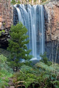 Trentham Falls, Trentham, Victoria Australia   Flickr - Photo Sharing!