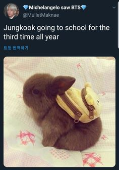 Funny pictures about Here's a bunny with a backpack. Oh, and cool pics about Here's a bunny with a backpack. Also, Here's a bunny with a backpack. Cute Baby Bunnies, Baby Animals Super Cute, Cute Little Animals, Cute Funny Animals, Baby Animals Pictures, Cute Animal Pictures, Animals And Pets, Jungle Animals, Cute Creatures
