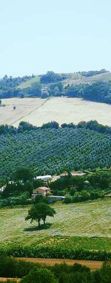 A3Passi Agriturismo | Azienda Del Carmine - vlak bij Ancona