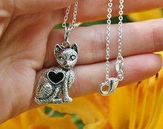 Kitty Cat Gift