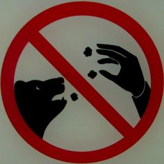 don't mesmerize nondescript animals with your four-fingered popcorn levitation trick!!