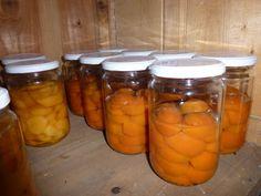 Abricots au naturel (ou presque !) - Dans la Bulle de Manou