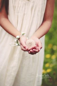 soft cotton dresses and dandelion wishes......