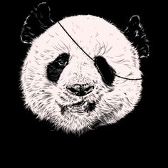 Endangered Pirate T shirt by kooky love