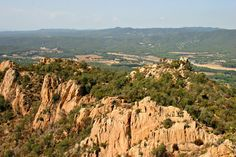just saying ...: The ancient cork forests of Sant Feliu de Guíxols ...