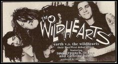 THE WiLDHEARTS: Photo