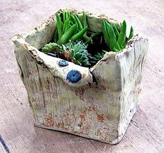 自然に溶け込んでる植木鉢。 : <陶芸・焼き物応援ブログ> やきもの見聞録