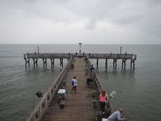 #61stpier #fishing #pierlife #galveston #TX #Texas #LoveGalveston #dock #pier #shark #redfish #fishing #61stpier #pier #pierlife #galveston #TX #Texas #dock #gulfofmexico #fish