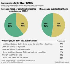 There have been no human studies on the long-term health impact of consuming GMOs, only animal studies, as is typically used in determining food safety. Anti-GMO groups point to published studies that say there are signs of toxic effects in animals that ate genetically modified crops &say more research needs to be done. GMO critics also raise concerns about the health effects of the toxin inserted into corn DNA to make it insect-resistant, & about glyphosate, the main herbicide used on GMO…