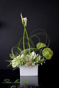 Calla lily with white and green anthurium arrangement Ikebana Flower Arrangement, Silk Flower Arrangements, Deco Floral, Arte Floral, Contemporary Flower Arrangements, Modern Floral Design, Fleur Design, Corporate Flowers, Indoor Flowers