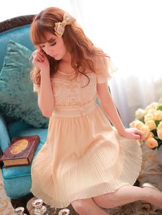 the girl next door lace embroidery dress