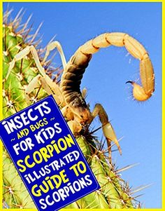 Scorpion: An Illustrated Guide to Scorpions for Readers Aged 9 and Up (Insects and Bugs for Kids) by E.T. Aardentee http://www.amazon.com/dp/B00ATVTL3M/ref=cm_sw_r_pi_dp_wsC4wb0BEMGFB