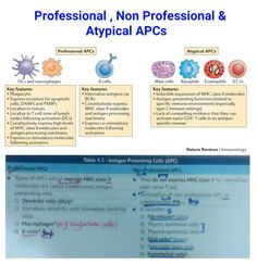 Professional , Non Professional & Atypical Antigen presenting cells ...