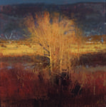 Michael Workman creates beautiful compositions and textures that capture beauty even in the most ordinary scenes.