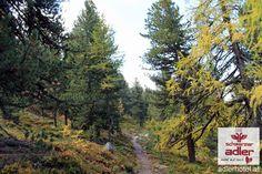 Herbstferien in Nauders am Reschenpass Winter, Sidewalk, Country Roads, Sun Rays, Autumn, Summer, Winter Time, Side Walkway, Walkway