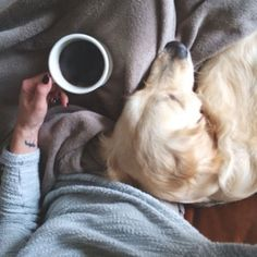 all I want in life  -coffee -dogs