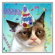 15% off all products.  Use coupon code WKNDWARRIORS.  Offer is valid until August 4, 2013. For all products, details or ordering click on the image or text!  #GrumpyCat #Gifts #products