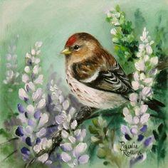 Art: Redpoll Garden web by Artist Paulie Rollins Bird Pictures, Pictures To Paint, Painting & Drawing, Watercolor Paintings, Bird Drawings, Art Portfolio, Bird Prints, Bird Art, Painting Techniques