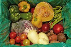 alimentos_comida_organicos