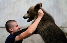 Antonio The Bear and this Zookeeper | 15 Sweet Animal/Human Friendships