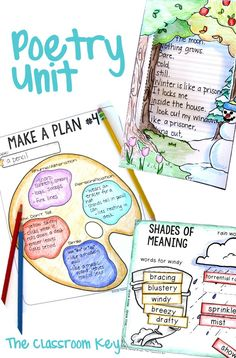 Poetry Unit ($) perfect for 2nd and 3rd graders, includes 4+ weeks of lesson plans, posters, PowerPoints, writing project templates, vocabulary activities, graphic oranizers and more!