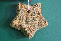 Bird Feeder, recycled, native birds, birds, diy, easy bird feeders, simple, cheap, fun