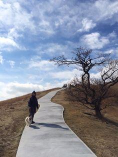 波琉くん/大室山アニマルキングダムにて/大室山でお散歩しました