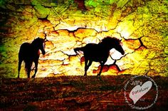 The Virginia Equine Artists Association was founded to promote, market and provide educational opportunities for Virginia Equine artists and photographers. Equine Art, Virginia, Moose Art, Horses, Artists, Animals, Animales, Animaux, Artist