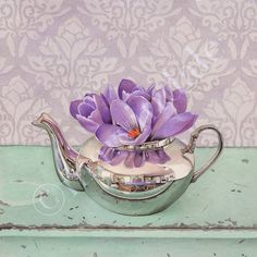 Behold the Crocus (framed art print from watercolour of purple crocus flowers in reflective teapot by cori lee marvin)