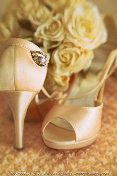 www.arcangel.com - cream-satin-shoes-with-wedding-rings