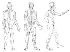 Acupuncture Interested in Qi gong? Check out this article on medical Qi gong, take a look at the uses and find out more on the acupuncture meridians! Energy Arts, Chi Energy, Qi Gong, New Age, Medical Qigong, Subcutaneous Tissue, Tai Chi Qigong, Traditional Chinese Medicine, Respect