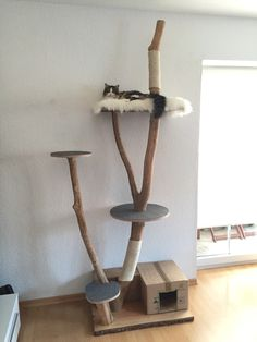 1000 images about cat trees furnitures on pinterest cat shelves outdoor cats and for cats. Black Bedroom Furniture Sets. Home Design Ideas
