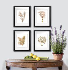 Sea Fan Art Print Sea Coral Prints Set of by GnosisPictureArchive