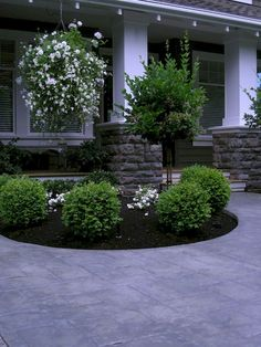 Front Yard Landscaping Make Over 1 - traditional - landscape - vancouver - Fabul. - Front Yard Landscaping Make Over 1 – traditional – landscape – vancouver – Fabulous Flower - Landscaping With Rocks, Front Yard Landscaping, Backyard Landscaping, Landscaping Ideas, Front Yard Gardens, Front Yard Planters, Landscaping Edging, Country Landscaping, Backyard Patio