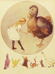 "Skitter Cats ""Alice meets a dodo bird"""