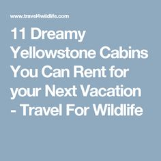11 Dreamy Yellowstone Cabins You Can Rent for your Next Vacation - Travel For Wildlife
