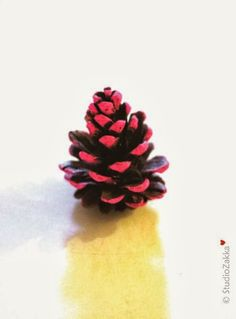 Pinecone happiness, by StudioZakka...