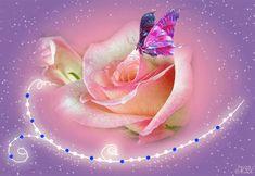 Sinfonía de Amor y Amistad•♥❤ : ❤Hermosas Rosas con Movimiento