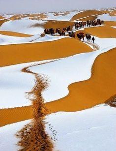 janetmillslove:Winter Snow, Sahara moment love